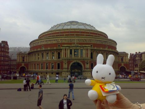Miffy at the Royal Albert Hall by miffystravels