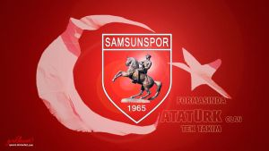 SAMSUNSPOR by quwen