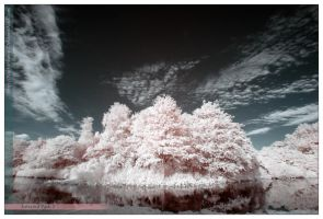 Infrared Park 2 by NightSheep