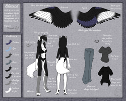 Blizzard Ref Sheet by Willow141