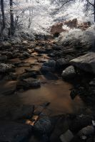 Loadpit Beck-IR by Elmik5