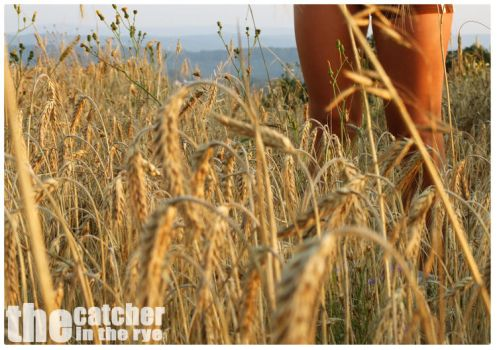 The catcher in the rye by marcior