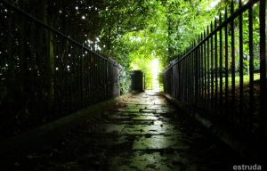 The Path To Other Side by Estruda
