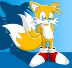 .:Tails:. by coycoy