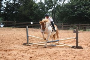 riding lesson - june 3rd, 2012 by xxtheSilent