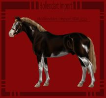Hollendart Import - #200 by Starblas