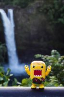 Domo waterfall! by PiliBilli