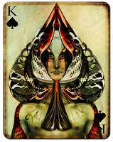 Playing Cards - King of Spades by cynthiafranca