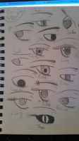 Eyes!!!!!!! by geromeow