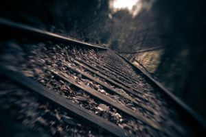 Rails by NordicElk