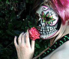 Sugar Skull by PlaceboFX