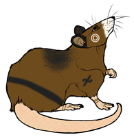 For Rat-icule by jesspotter