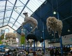 Flying sheep, Abergavenny, 709 by bobswin
