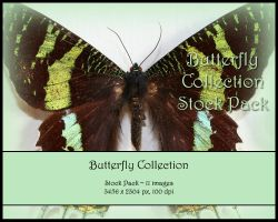 Butterfly Stock Pack by Toefje-Kunst