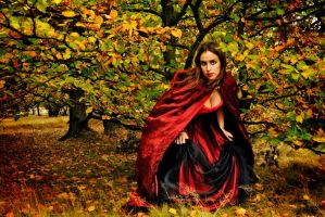 Red Autumn by Laiyla