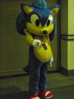 Sonic Cosplayer by stormx6