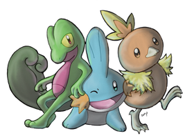 Hoenn Starters! Treecko, Mudkip, and Torchic! by EemsArt