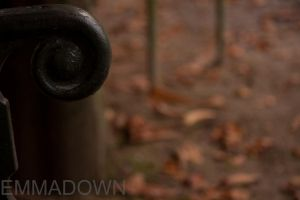Never Underestimate A Bench's Arm In Autumn by oEmmanuele