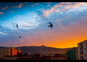 Sunset by ulyce
