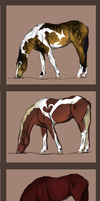 New horses Coming to a new stables by SLEC-EqIsMyLife