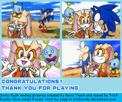 Sonic Rush Ending Pictures by TrishRowdy