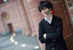 DC - Rose from Kaito - by Yamane