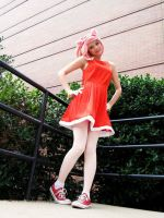 Anime USA - Amy Rose Fullbody Shot by bubbleXteaX123