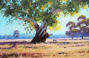 Red Gum Australia by artsaus