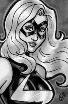 Ms. Marvel by BigChrisGallery