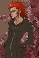 Axel by halfdemondog