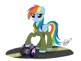 Lieutenant Rainbow ''Maverick'' Dash by stuhp