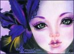 Black Iris ACEO by Katerina-Art