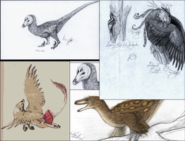 Feathered Drawings by WhiskerfaceRumpel