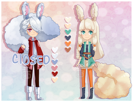 Adopts 14 [1/2 OPEN] by Chows-adopts