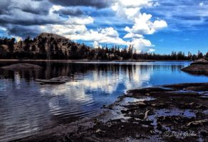 Wet Meadows Res. by StephGabler