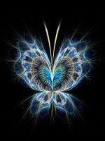 Butterfly by fractist