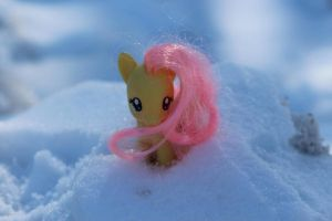 Fluttershy in the Snow by lordvader914