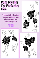 Rose Brushes for CS3 by Torpedo-Design