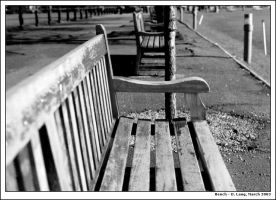 Bench at Trinity college by anotherview