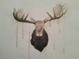 Moose. by TheBreakfastUnicorn