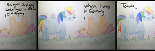 Rainbow and Scoot by FarbrorJorgen