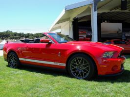 2011 Mustang Shelby GT500 conv by Partywave