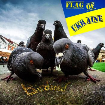 Flag of Ukraine by UtterlyLudicrous
