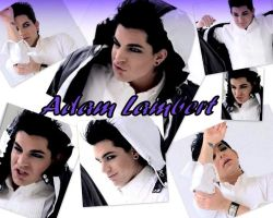 Adam Lambert Desktop Wallpaper by SasukeUchihable