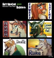 Badges AnthroCon 2008 - part 1 by TaniDaReal