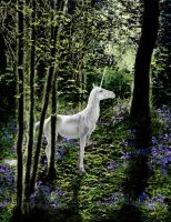 Unicorn and Bluebells by Skye-Fyre