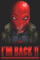 Red Hood by Madcatstudios