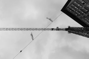 Midpoint of the Crane by NorbertKocsis