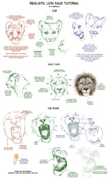 Realistic Lion Face Tutorial by TamberElla