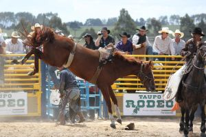 Taupo Rodeo 132 by Sooty-Bunnie